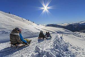 Rodeln im Skigebiet Reinswald